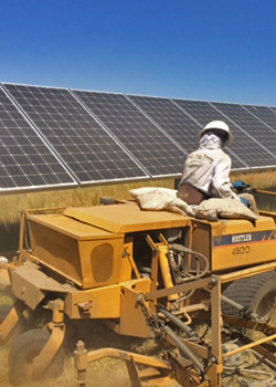 Weed Abatement - Solar Cleaning
